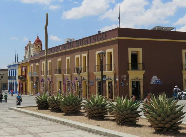 Oaxaca11