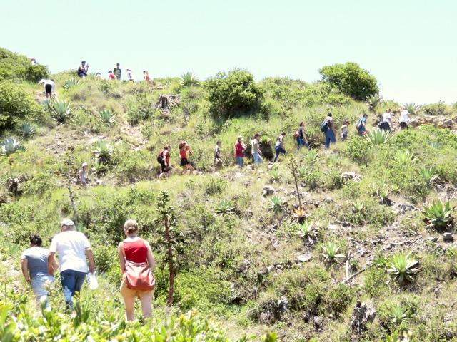 Cerro Verde - 9 of 19
