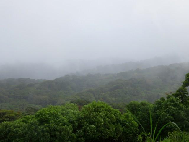 Rainy_Season_Blog - 25 of 66