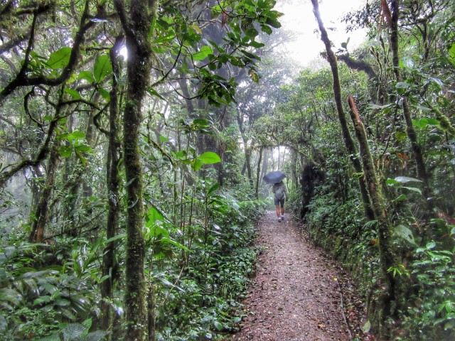Rainy_Season_Blog - 28 of 66