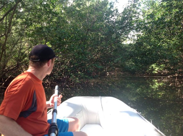 Exploring the mangroves at Oleta State Park