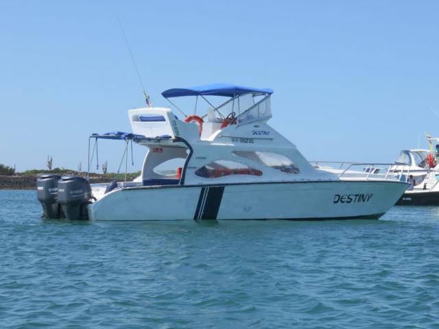 Galapagos-29
