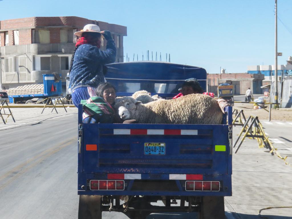 Titicaca-4.jpg