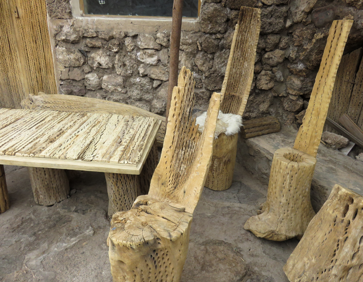 Furniture made of dried cactus stumps
